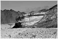 Cliff and mountains. Negev Desert, Israel ( black and white)