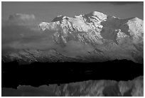 Mountain goats  in the Aiguilles Rouges and Mont-Blanc range at sunset, Alps, France. (black and white)