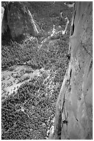 Valerio Folco and Tom McMillan on the crux pitch (second to last). El Capitan, Yosemite, California (black and white)