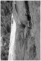 Valerio Folco leads the long and complex crux pitch, taking more than half a day. El Capitan, Yosemite, California (black and white)
