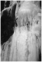 Stalactite of the Moulins Falls, La Grave. Alps, France (black and white)