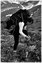 Woman backpacker with a large backpack tying up her shoelaces. Lake Clark National Park, Alaska (black and white)