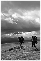 Backpackers seen from the side in the tundra. Lake Clark National Park, Alaska (black and white)