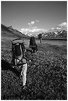 Backpackers with heavy packs. Lake Clark National Park, Alaska (black and white)