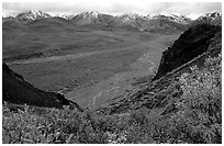 Tundra, wide valley with rivers, Alaska Range in the evening from Polychrome Pass. Denali National Park, Alaska, USA. (black and white)