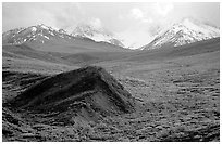 Hills and mountains near Sable Pass. Denali National Park ( black and white)