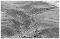River cut in tundra foothills near Eielson. Denali National Park ( black and white)