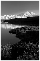 Mt Mc Kinley above Wonder Lake, evening. Denali National Park, Alaska, USA. (black and white)