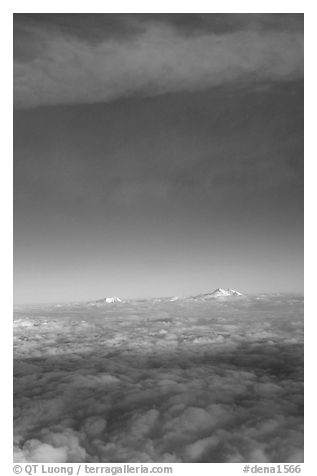 Mt Foraker and Mt Mc Kinley emerge from  sea of clouds. Denali National Park (black and white)