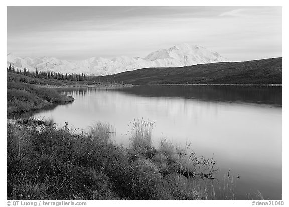 Wonder Lake and Mt McKinley at dusk. Denali National Park (black and white)