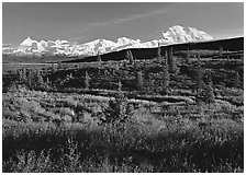 Tundra and Mt McKinley range, late afternoon light. Denali National Park ( black and white)