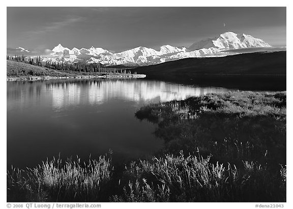 Mt Mc Kinley above Wonder Lake, evening. Denali  National Park (black and white)