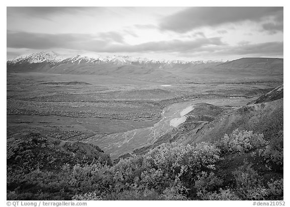 Tundra and braided rivers from Polychrome Pass, afternoon. Denali  National Park (black and white)