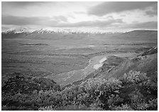 Tundra and braided rivers from Polychrome Pass, afternoon. Denali National Park, Alaska, USA. (black and white)
