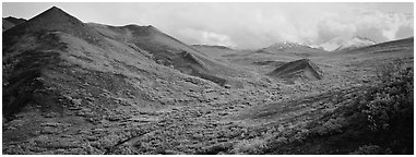 Tundra-covered foothills and valley. Denali  National Park (Panoramic black and white)