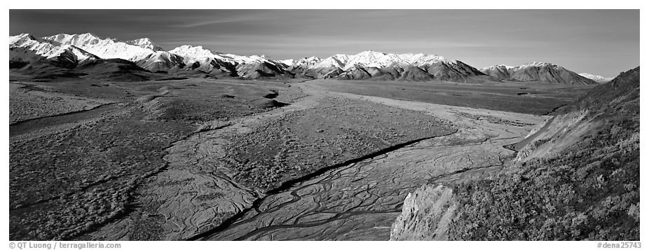 Alaskan scenery with wide braided rivers and mountains. Denali National Park (black and white)