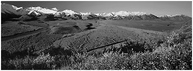 Alaskan mountain landscape with wide river valley. Denali  National Park (Panoramic black and white)
