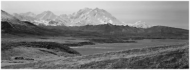 Mount McKinley rises above autumn tundra. Denali National Park (Panoramic black and white)