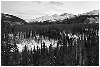 Riley Creek drainage and mountains in winter. Denali National Park ( black and white)