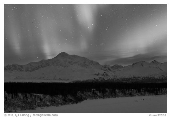 Northern lights above Mt McKinley. Denali National Park (black and white)