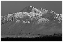 Denali, winter sunrise. Denali National Park, Alaska, USA. (black and white)