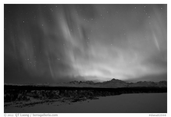 Northern lights  above Alaska range. Denali National Park (black and white)