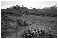Alaska Range from Eielson. Denali National Park, Alaska, USA. (black and white)