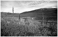 Alatna River valley near Circle Lake. Gates of the Arctic National Park, Alaska, USA. (black and white)