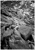 Lichen covered rocks at the base of Arrigetch Peaks. Gates of the Arctic National Park ( black and white)