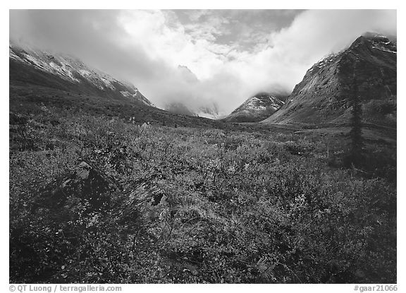 Arrigetch Peaks, tundra in fall colors, and clearing storm. Gates of the Arctic National Park (black and white)