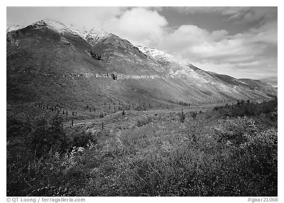 Tundra, valley, and mountains with fresh snow. Gates of the Arctic National Park (black and white)