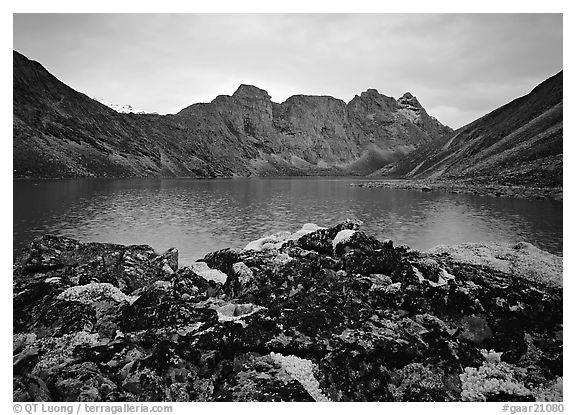 Dark rock and moss, Aquarius Lake. Gates of the Arctic National Park (black and white)