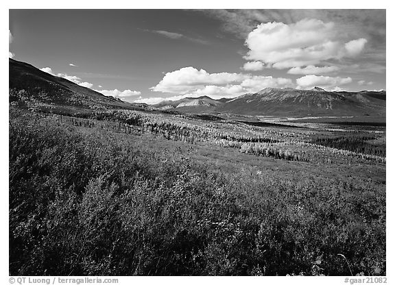 Alatna River valley. Gates of the Arctic National Park (black and white)