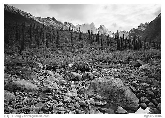 Arrigetch Creek and Peaks. Gates of the Arctic National Park (black and white)