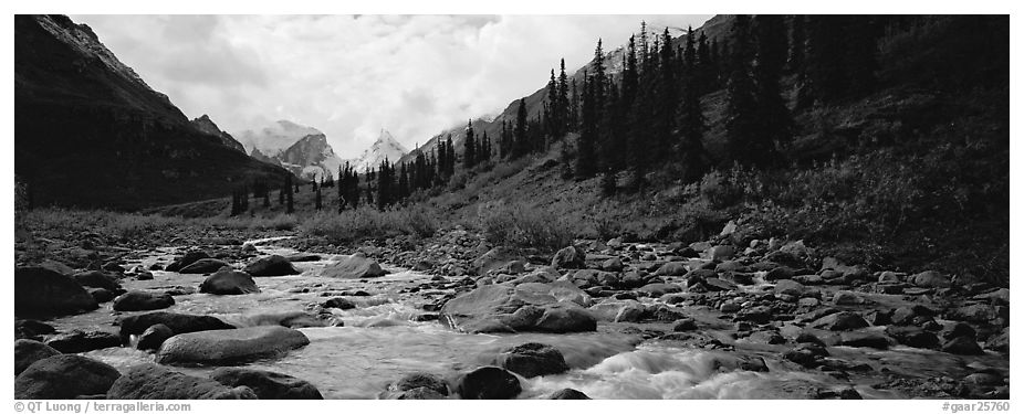 Panoramic black and white picture photo taiga scenery with stream gates of the arctic national park