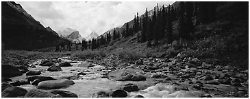 Taiga scenery with stream. Gates of the Arctic National Park (Panoramic black and white)