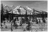 Boreal forest and brooks range in winter. Gates of the Arctic National Park ( black and white)