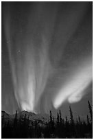 Northern lights over Brooks Range mountains. Gates of the Arctic National Park, Alaska, USA. (black and white)