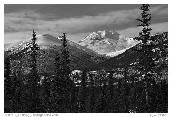 Boreal forest and snowy Brooks Range. Gates of the Arctic National Park (black and white)