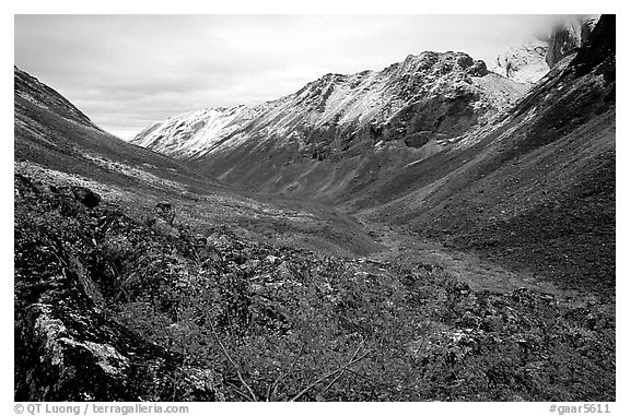 Aquarius Valley near Arrigetch Peaks. Gates of the Arctic National Park (black and white)