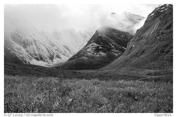 Tundra and Arrigetch Peaks partly hidden by clouds. Gates of the Arctic National Park (black and white)