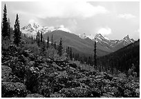 Arrigetch Peaks from boulder field in Arrigetch Creek. Gates of the Arctic National Park, Alaska, USA. (black and white)