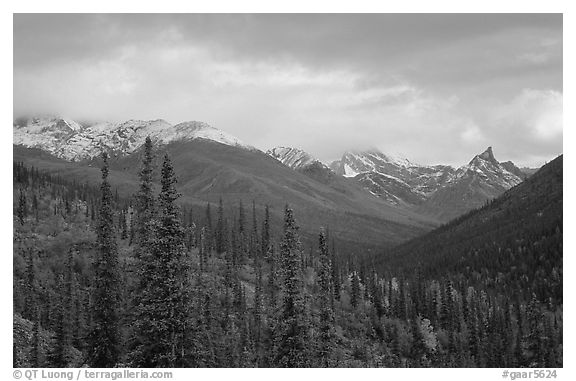 Arrigetch Peaks from Arrigetch Creek entrance at sunset. Gates of the Arctic National Park (black and white)