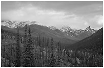 Arrigetch Peaks from Arrigetch Creek entrance at sunset. Gates of the Arctic National Park ( black and white)