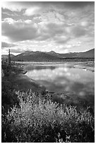 Alatna River valley near Circle Lake, evening. Gates of the Arctic National Park ( black and white)