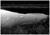 Alatna River reflections, sunset. Gates of the Arctic National Park ( black and white)
