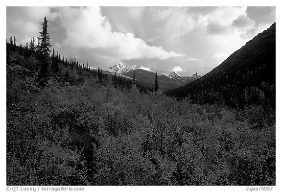 Distant Arrigetch Peaks seen from Arrigetch Creek. Gates of the Arctic National Park (black and white)