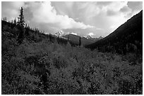 Distant Arrigetch Peaks seen from Arrigetch Creek. Gates of the Arctic National Park, Alaska, USA. (black and white)