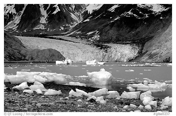 Mc Bride glacier, Muir inlet. Glacier Bay National Park (black and white)