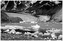 Mc Bride glacier, Muir inlet. Glacier Bay National Park, Alaska, USA. (black and white)